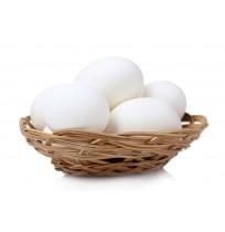 White-eggs